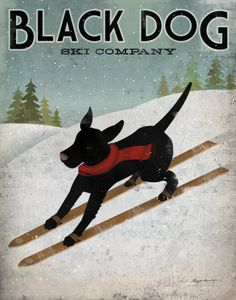 Just love this dog. Black Dog Ski Prints by Ryan Fowler at AllPosters.com