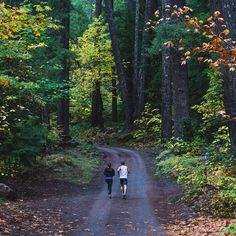 Fall Trail Runs up the McKenzie River in Oregon Near Eugene aka TrackTown USA