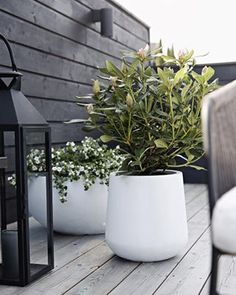 Sharing an outdoor tip with you on my blog today outdoors stylizimohouseoutdoors stylizimoblog flowerpot uterom terrasse