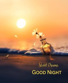 Cute Good Night, Good Night Sweet Dreams, Good Night Image, Good Morning Good Night, Good Morning Images, Night Time, Greetings For The Day, Good Night Greetings, Good Night Wishes