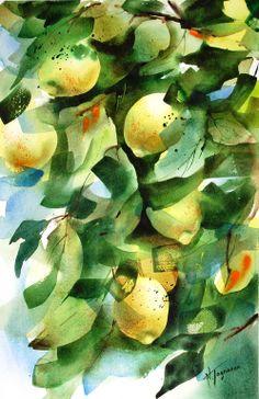 "Saatchi Art Artist: Nadia Tognazzo; Watercolor 2011 Painting ""Lemon tree"""
