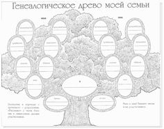 Раскраски генеалогическое дерево семьи 44