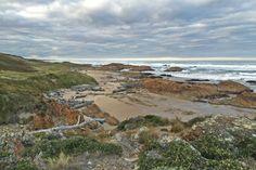 The rugged Tarkine coast