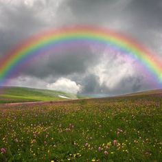 30 Amazing and Beautiful Rainbow Pictures - COOLUPON regenbogen 30 Amazing and Beautiful Rainbow Pictures Rainbow Magic, Rainbow Sky, Love Rainbow, Rainbow Colors, Over The Rainbow, Image Arc En Ciel, Rainbow Photography, Rainbow Aesthetic, Somewhere Over