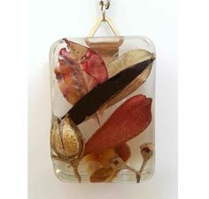 Resin Pendant - Australian leaves, gum nuts and birch nut