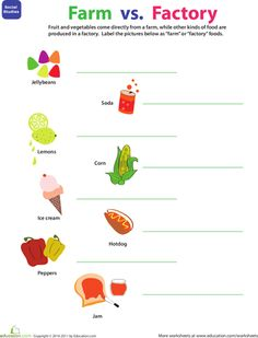 Worksheets: Where Food Comes From: Farm or Factory?
