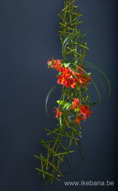 Hanging arrangement made with sticks This arrangement is made for our Online…