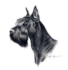 GIANT SCHNAUZER Dog Art Print Signed by Artist DJ by k9artgallery, $12.50