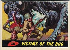 38. Victims of the bug