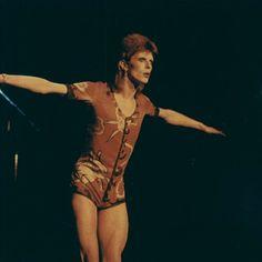 #prepares to fly away #thunder thighs #ziggy #zig zag #70s