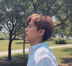 ofc boyfriend of renjun and jeno, lmao💕 Nct 127, Nct Dream Jaemin, Nct Life, Mark Nct, Jung Woo, Na Jaemin, Sanha, Latest Albums, Love At First Sight
