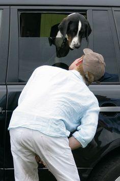 PRINCE HARRY CRACKS JOKES WITH ANIMALS.    - TownandCountryMag.com