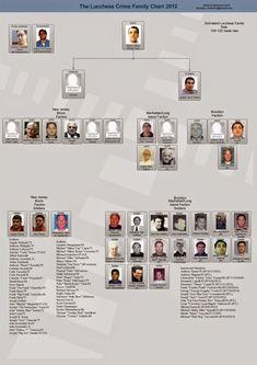 La Mafia é anche nella tua citta * Die Mafia ist auch in deiner Stadt : Mafia in den USA