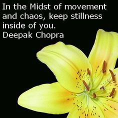 """In the midst of movement and chaos, keep stillness inside of you."" - Deepak Chopra"