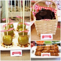 Barnyard Bash- Farm themed Birthday Party