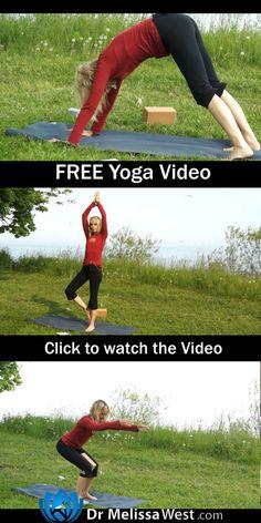 basic yoga, Yoga, yoga exercises, yoga exercises for beginners, yoga for beginners, yoga for beginners online, yoga poses for beginners, yoga routine for beginners, yoga videos for beginners