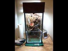10 gallon vertical pauladarium build Frog Habitat, Building, Buildings, Construction