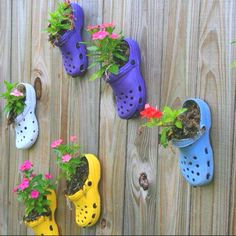 Nice way to keep your old CROCS shoes...
