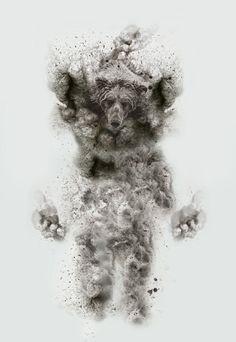 Espinhas e distúrbios humanos em retratos ilustrados