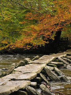 country-tweed: Tarr Steps, Devon, England by parallel-pam / DeviantART Somerset England, Devon England, Beautiful Photos Of Nature, Nature Photos, Genius Loci, Modern Photographers, Happy Images, Azores, Photography And Videography