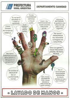 ... Dominio Bacteria: Beneficios y Prejuicios de las Bacterias.