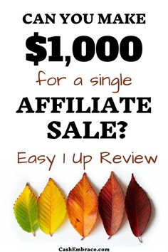 Make Money Now, Make Money Blogging, Online Income, Earn Money Online, Affiliate Marketing, Marketing Program, Extra Money, Internet Marketing, Passive Income