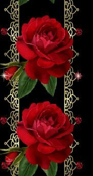 Animated wallpaper, screensaver for cellphone Vintage Flowers, Red Flowers, Pretty Flowers, Red Roses, Parc Floral, Beautiful Love Pictures, Glitter Gif, Deer Pictures, Yellow Roses