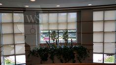 Walsh Construction Lobby #windowtreatments #shades #windowshades #solarshades #windows #Chicago  #motorizedshades #construction #interiordesign