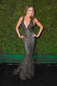 Fox And FX's 2014 Golden Globe Awards Party - Sofia Vergara