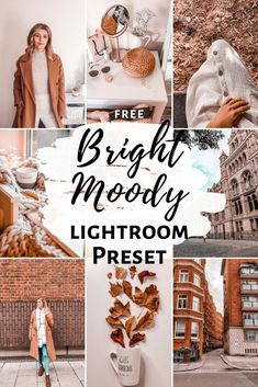 Create a beautiful aesthetic feed with this free Lightroom preset. Bright Moody Preset that will make your pictures brighter and give them that moody look Lightroom Gratis, Presets Lightroom, Vsco Presets, Lightroom Effects, Best Free Lightroom Presets, Vsco Themes, Feeds Instagram, Lightroom Tutorial, Pics Art