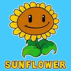 We will show you today how to draw the Sunflower from Plants vs. Zombies Game in this easy to follow step by step tutorial. If you can draw simple shapes and letters, then you can draw Sunflower from Plants vs. Zombies Game.