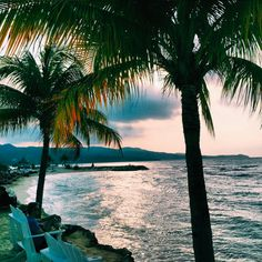 Montego Bay, Jamaica // instagram @kylie_francis
