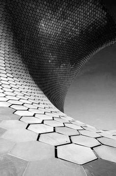 Museo Soumaya, Mexico City - reptil skin pour se glisser entre les adversaires