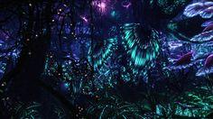 Beautiful pandora forest at night