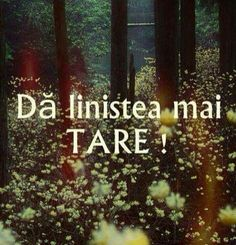 Da linistea mai tare :D Funny Quotes, Life Quotes, Qoutes, Christ In Me, Just You And Me, Strong Words, Inspirational Quotes About Love, Special Quotes, Bible Verses Quotes