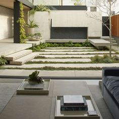Dry landscaped garden in Butterfly house, San Fransico, CA, USA by Surfacedesign, Inc