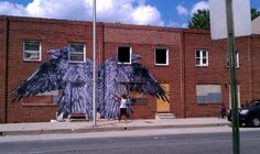 Gaia: Ravens on the Abandoned Edgar Allan Poe Homes in South West Baltimore
