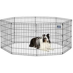 Tray For Large Dog Crate At Pet Supplies Plus