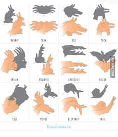 Schattenspiel Mehr puppets Shadow forms made by hand 1000 Life Hacks, Useful Life Hacks, Shadow Puppets With Hands, Hand Shadows, Shadow Art, Shadow Play, Sign Language, Babysitting, Kids And Parenting