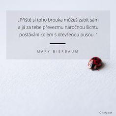 Příště si toho brouka můžeš zabít sám a já za tebe převezmu náročnou šichtu postávání kolem s otevřenou pusou. - Mary Bierbaum Quotes, Quotations, Quote, Shut Up Quotes