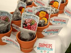 Project Nursery - Terra Cotta Pots with Soil and Seeds for Farmers Market Party Favors