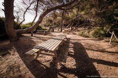 Fotos: Isaias Mena - Ajuntament de Tarragona Outdoor Furniture, Outdoor Decor, Florida, Park, Pictures, The Florida, Parks, Backyard Furniture, Lawn Furniture