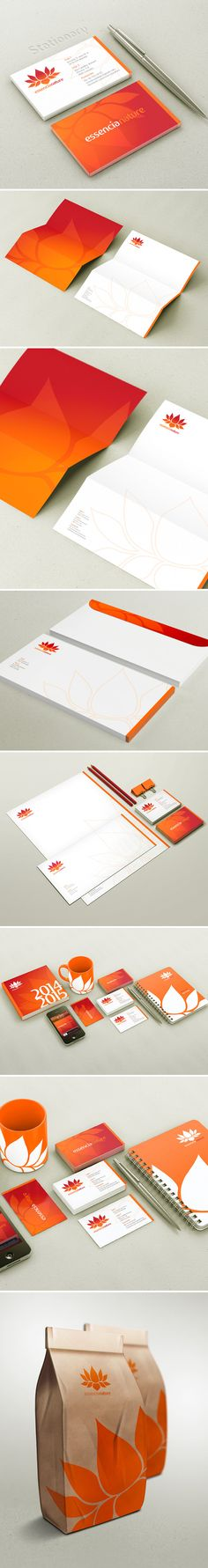 Very neat brand. Nice and clean, I really like the way the color works in this. The promotional materials all work well together and apart from the stationary. I'm impressed by this one.