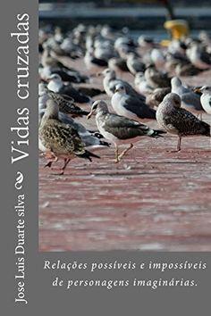 Vidas cruzadas: Relações possíveis e impossíveis de personagens imaginárias.: Amazon.co.uk: Jose Luis Duarte silva: 9781495420856: Books