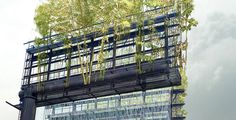 LA-based artist Stephen Glassman - Urban Air. He wants to transform the space above the highway that's normally used for advertising into a bamboo forest in the sky    Read more: http://popupcity.net/2012/12/la-artist-proposes-floating-park-above-the-highway/#ixzz2E7UBX2V7