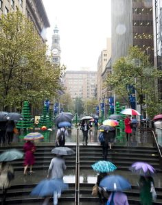 Sydney's urban jungle transformed into a Lego forest
