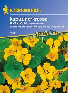 New Interessante Blumenzwiebel Mischung in Pastellfarben f r die Etagen Bepflanzung Gefunden auf tom garten de Pinterest