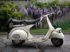 Der Motorroller. Die Motorroller.  Das hier ist ein ziemlich alter Motorroller, eine Vespa.