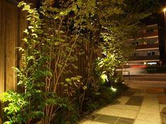 日々のこと «  藤倉造園設計事務所:雑木の庭・野山の木を使った自然風な庭づくり