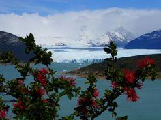 El Calafate Tourism: Best of El Calafate, Argentina - TripAdvisor